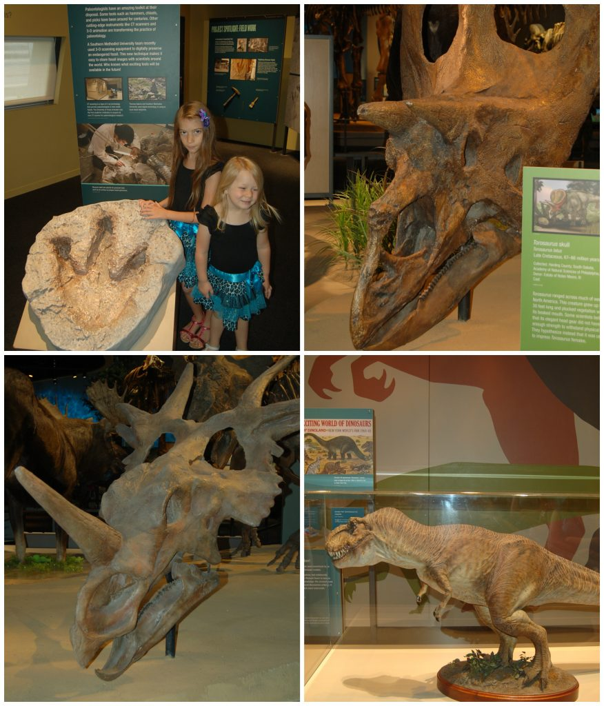 perot collage 2