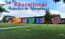 Top 10 Educational Activities in Memphis