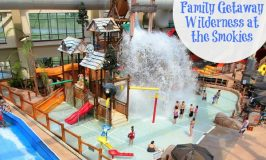 Wilderness at the Smokies- Fun Family Getaway
