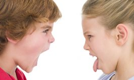 Let'em Fight! Why Sibling Fights are Actually a Good Thing