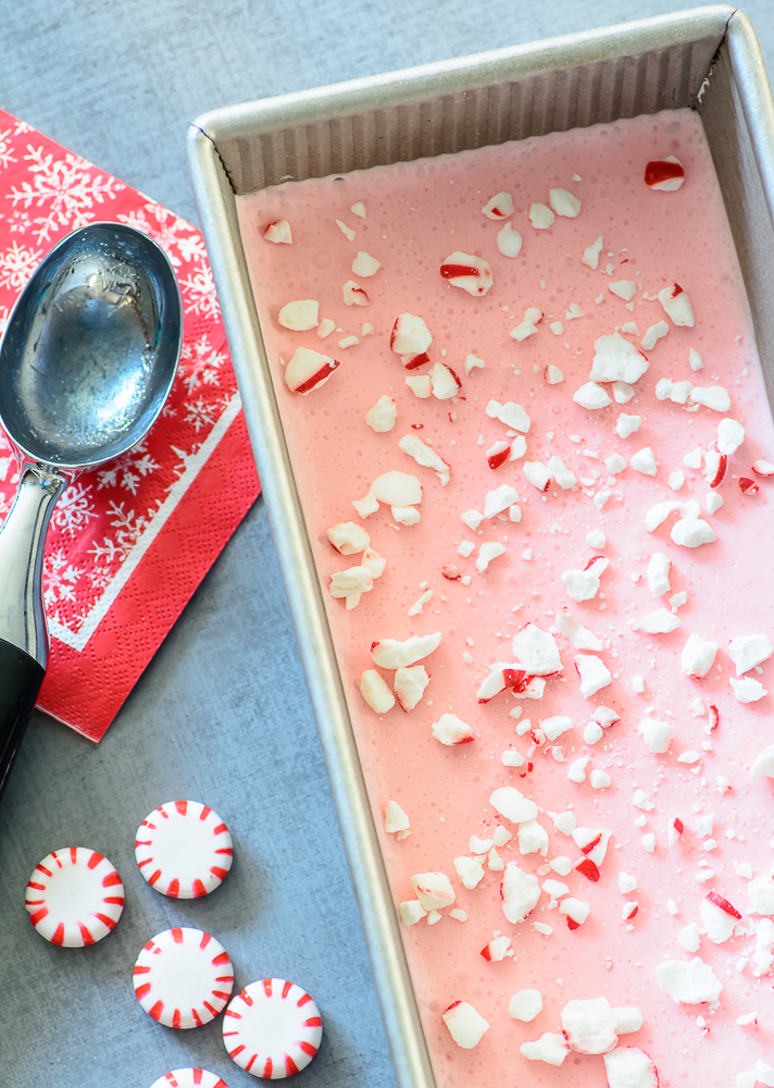 No Churn Peppermint Ice Cream. This homemade peppermint ice cream is so delicious and easy that it might make Santa skip the cookies this year!
