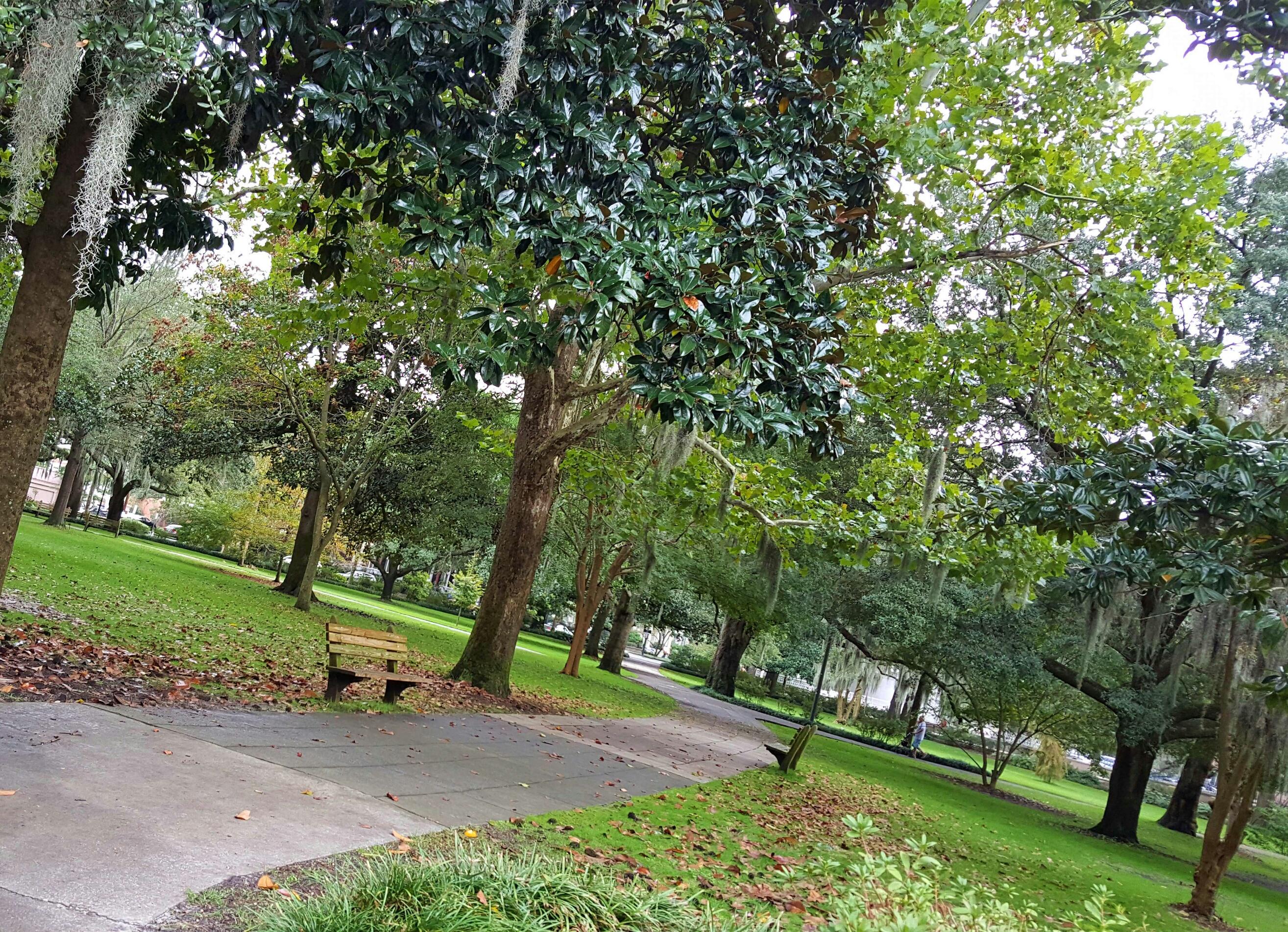 8 Most Romantic Cities in the US. Savannah, GA